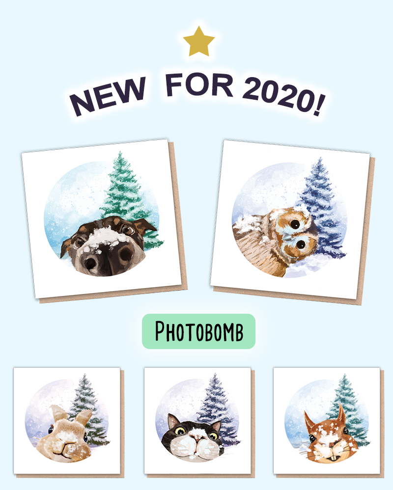 Eco friendly Christmas cards with animals on them. Each animal is photobombing the Christmas tree scene while they play in the snow.