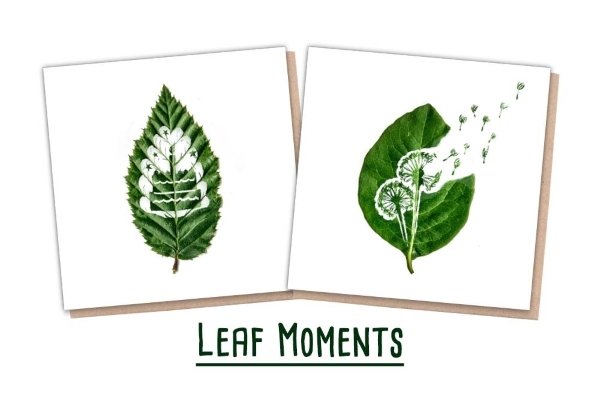 One Tree Planted - 2 Leaf Cards