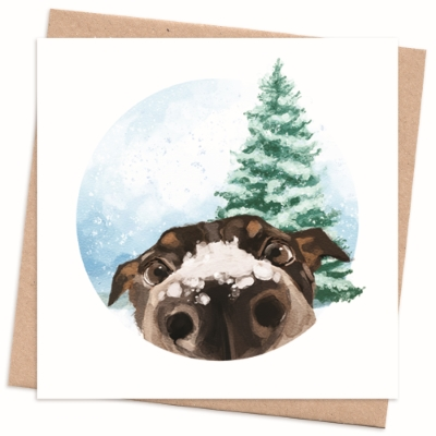 Recycled Christmas Card Pack - Dog