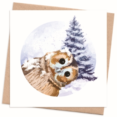 Recycled Christmas Card - Owl Photobomb