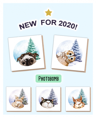 Eco Friendly Christmas Cards UK